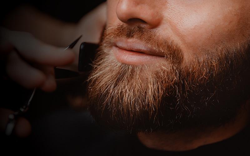 beard maintenance 101 - How To Maintain Your facial hair