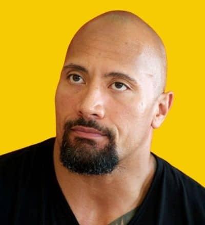 the-rock-circle-beard-bald